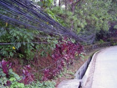 copper_cables_02