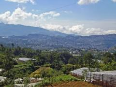 バギオ市街の眺望