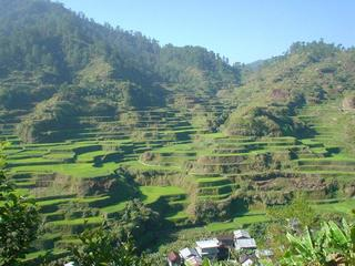 photos/rice_terraces_001